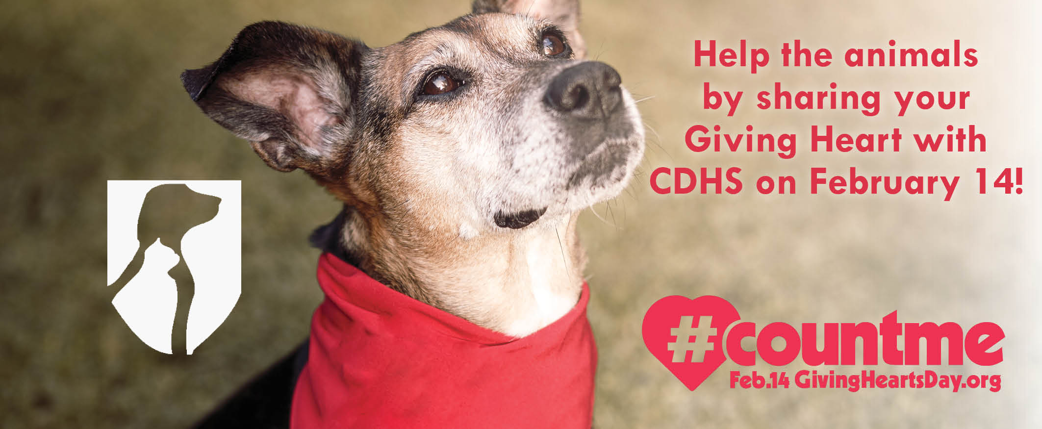 Donate to CDHS on Giving Hearts Day!